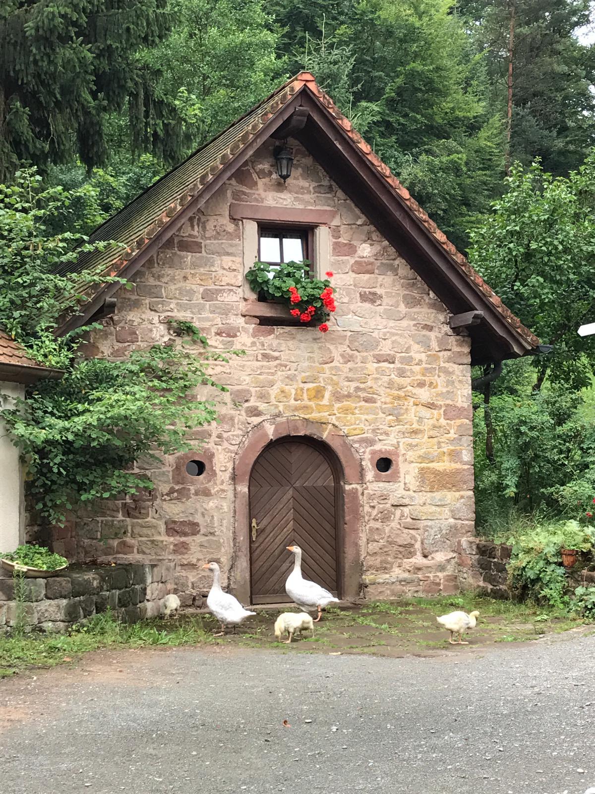 Romantisch übernachten in der Pfalz